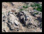 Бомжовские могилы