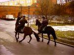 конная милиция